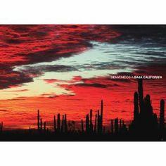 LAND,SEA,DESERT AND SKIES of BAJA CALIFORNIA: 海と砂漠を愛するすべてのツーリストへ。
