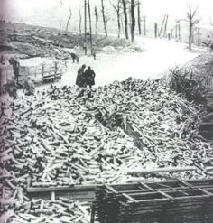 Empty shells at Verdun
