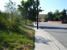 SQLA Inc. // West Hills Planting Commercial Landscape Design, West Hills, Planting, Sidewalk, Plants, Side Walkway, Walkway, Walkways, Pavement