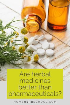 There are frequent questions about whether medicinal herbs are better than pharmaceuticals. The answer most often is yes. Herbal Remedies, Home Remedies, Natural Remedies, Healing Herbs, Medicinal Plants, Alternative Health, Alternative Medicine, Natural Lifestyle, Healthy Lifestyle