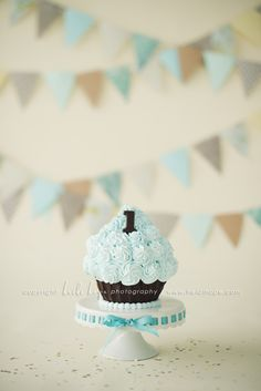 smash cake from Heidi Hope photography and Sweet Indulgences ....@Heather Otto, I may have you make one for Keaton's birthday for me! :)