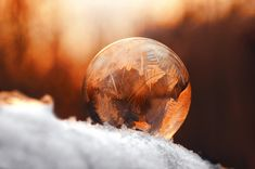 https://flic.kr/p/Eo6Cfg | Ice ball | Thanks for all visits, comments & Favs! I would be greatful if you follow me in flickr  Have a nice day! :)   NO images//awards//graphics please! © 2018, All Rights Reserved.    Explore - macro ||  Facebook || 500px  ||  Twitter  ||   1x