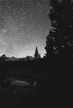 • gif love art Black and White anime beautiful sky b&w night edit space galaxy stars starry artwork monochrome world ocean milky way star planet falling clear Our forrest starry night falling star constellation anime scenery Falling Stars oriondiary •