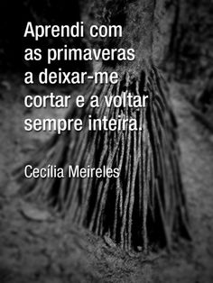Aprendi com as Primaveras a me deixar cortar para poder voltar sempre inteira Life Words, Single Words, More Than Words, Make A Wish, Quotes To Live By, Favorite Quotes, Things To Think About, Texts, Wisdom