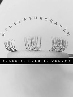 Classic, Hybrid and Volume techniques by The Lashed Raven