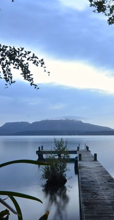 Lake Tarawera in the Rotorua District, NZ......I lived here as a child/teen and worked at near by Buried Village Kate S.