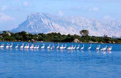 San Teodoro, Sardinia That Seduce