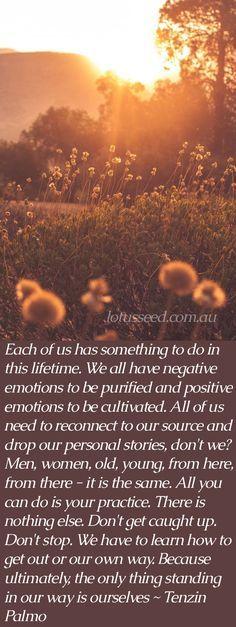 Tenzin Palmo Buddhist Zen Spiritual Quotes by lotusseed.com.au