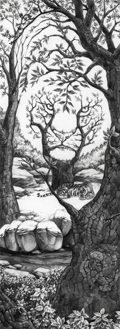 The Sleeping Tiger Optical Illusion The_Sleeping_Tiger_by_willustration – Mighty Optical Illusions. This would make an awesome tattoo! Illusion Kunst, Sleeping Tiger, Wow Art, Art Design, Skull Design, Cool Drawings, Artwork Drawings, Cool Sketches, Detailed Drawings