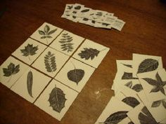 Tree Leaf Bingo