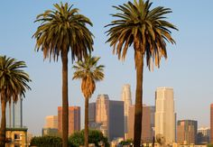 Begin and end the cruise in Los Angeles, California.