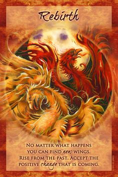 """Magical Times Empowerment Cards – Rebirth – """"No matter what happens you can find new wings. Rise from the past. Accept the positive change that is coming. Phoenix Quotes, You Are My Moon, Oracle Tarot, Tarot Card Decks, Angel Cards, Card Reading, Deck Of Cards, Spiritual Awakening, Positivity"""