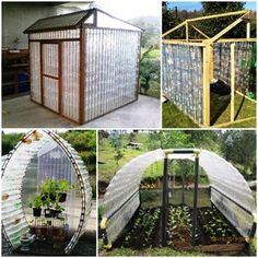 Greenhouse On The Cheap Using Plastic Bottles. Perfect for school!