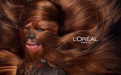 MEME HIJACKING: LÓreal jumps on the meme around the release of Star Wars 7 with hairy wookie Chewbacca Star Wars Meme, Star Wars Film, Star Wars 2, Chewbacca, Jeaniene Frost, Princesa Leia, Star Wars Wallpaper, Harrison Ford, Carrie Fisher