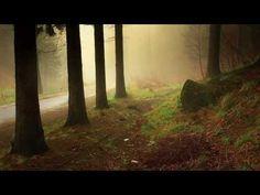 Dick de Ruiter: Thuiskomen In Jezelf - Meditatie en Ontspanning