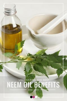 Uncovering how neem oil benefits your skin, hair and health!