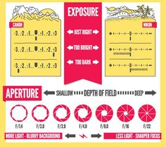 Photography Cheat Sheets. http://digital-photography-school.com/15-best-cheat-sheets-printables-infographics-photographers/