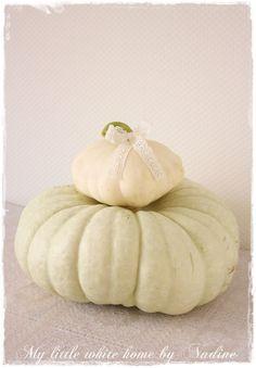 Fall 2012 Nadine's Cakes & My little white home: Lovely pumpkins