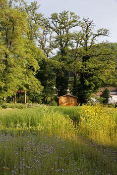 Parc de la Villa BURRUS - Les jardins - Jardin potager - www.jardins-burrus.fr