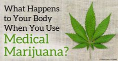 How Does Medical Marijuana Work and What Diseases Can It Help Treat?. Discover the real deal about medical marijuana and find out why you'd want your own state to approve its use, too.