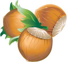 noisette-automne-écureuil-forêt-cliparts noisettes Image Fruit, Vegetable Illustration, Illustration Botanique, Gautama Buddha, Sweet Tattoos, Autumn Cozy, Tree Patterns, Thanksgiving Cards, Fabric Painting