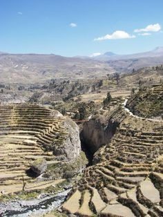 Cañon Del Colca, Arequipa