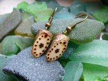 #Perle #pearl #natur #nature #schmuck #jewellery #silber #silver #Holzschmuck #wooden #brown #braun #Ohrring #earring