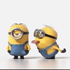 The perfect Minions Tongue Annoy Animated GIF for your conversation. Discover and Share the best GIFs on Tenor. Funny Minion Pictures, Minions Images, Funny Minion Memes, Minions Quotes, Minion Humor, Memes Humor, Minions Despicable Me, My Minion, Minion School