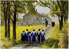 Sunday Meeting~ Sarah's Country Kitchen ~ Amish Community, Amish Farm, Amish Family, Amish Country, Country Life, Country Kitchen, Country Living, Farm Life, Amish Culture