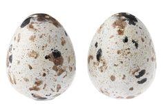 Egg salt and pepper shakers-williams-sonoma
