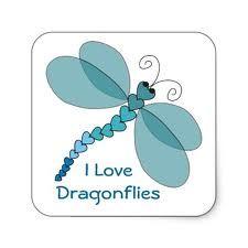 I love dragonflies