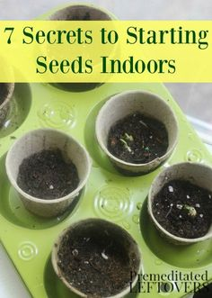 7 Secrets to Starting Seeds Indoors- Starting you garden plants from seeds indoors can save you time and money. Grow seedlings successfully with these tips.