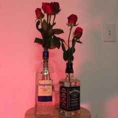 his colors, his aesthetic Dry Gin, Red Roses, Photos, Pictures, Decoration, Floral, Photography, Inspiration, Beautiful