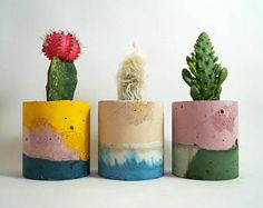Browse unique items from studioemmamcdowall on Etsy, a global marketplace of handmade, vintage and creative goods. Pottery Painting Designs, Pottery Designs, Concrete Crafts, Concrete Projects, Pencil Cactus, Concrete Plant Pots, Beton Diy, Painted Pots, Plant Decor