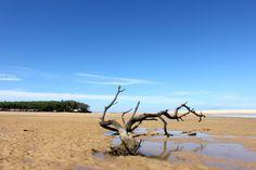 Currimundi Lake
