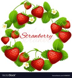 by MicrovOne Juicy strawberry vector frame wreath. Fruit red strawberry, illustration of wreath Strawberry Drawing, Strawberry Art, Strawberry Kitchen, Strawberry Fields, Strawberry Recipes, Strawberry Shortcake, Strawberry Tattoo, Imagenes Free, Strawberry Pictures