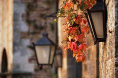 Detalles florales en las farolas de San Gimignano.