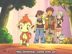Will Ash take Chimchar?