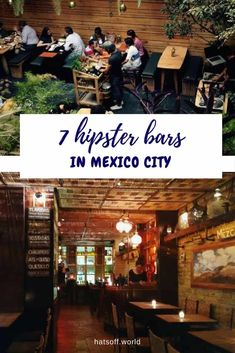 best mezcal bars in mexico city