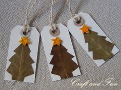 Homemade Gift tags: made with leave and orange peels!