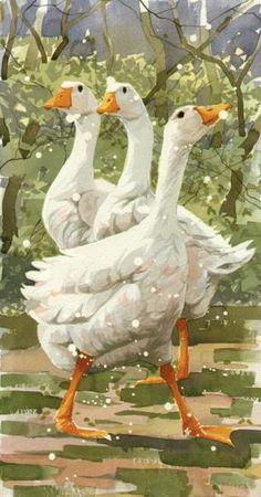 Mary Ann Rogers - Snow Geese