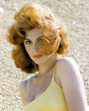 Tina Louise pictures and photos