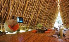 Bambú para la construcción - Noticias de Arquitectura - Buscador ...