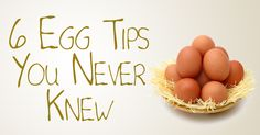 Eggs ARE a Highly Nutritious Food  The issue of whether or not to refrigerate your eggs becomes a moot point if you've been scared into beli...