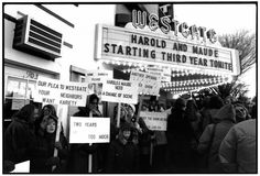 Protest at Edina's Westgate, Two Years into the Theater's 114-Week Run of Harold and Maude  The Westgate Theater in Edina, Minnesota, began showing a little-noticed independent film called Harold and Maude on March 22, 1972. Soon the quirky movie with its two unlikely protagonists—a wealthy young man with a death obsession and his feisty septuagenarian companion—started catching on with Twin Cities audiences, and the Westgate began extending its run. Exhibitors around the country took