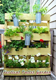 {Sage & #Frugal #Garden #Tips} Don't have enough space for a garden…try the vertical pallet garden! This vertical pallet garden is quick, simple and inexpensive DIY project but with beautiful results.