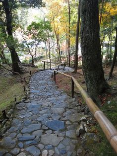 Kyoto Kokedera Saihoji Temple de mousses | da Annie Guilloret