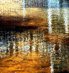 Swallow's Mill reflections by Tina Negus.  Color!