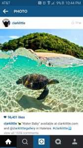 Check out our plumfund campaign at Plumfund.com http://www.plumfund.com/medical-fund/swimming-with-sea-turtles