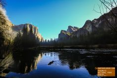 After The Rain - A Gorgeous Morning in Yosemite